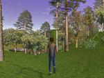 Catching Features - компьютерная игра Shot0014_150