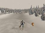 Catching Features - компьютерная игра Skio02_150